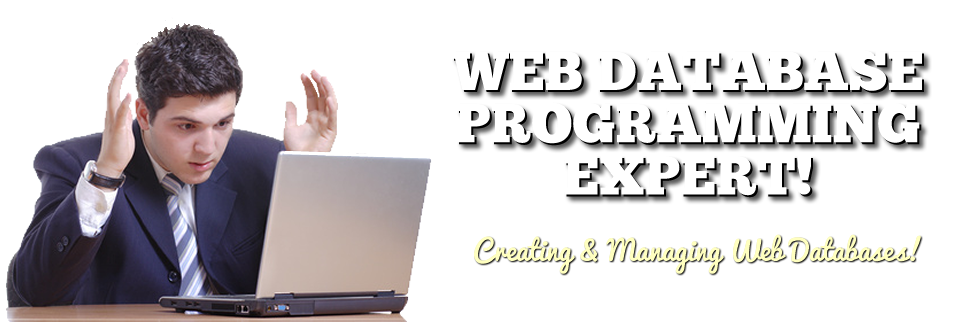 web-database-programming-expert