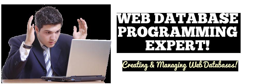 web-database-programming-expert